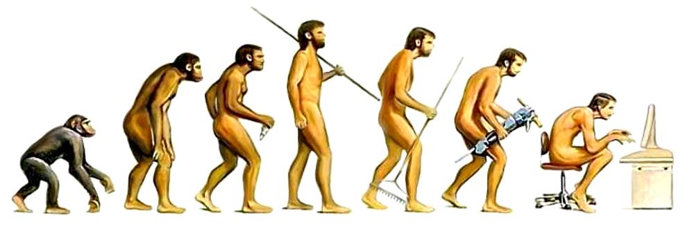 Der Mensch in der Evolution