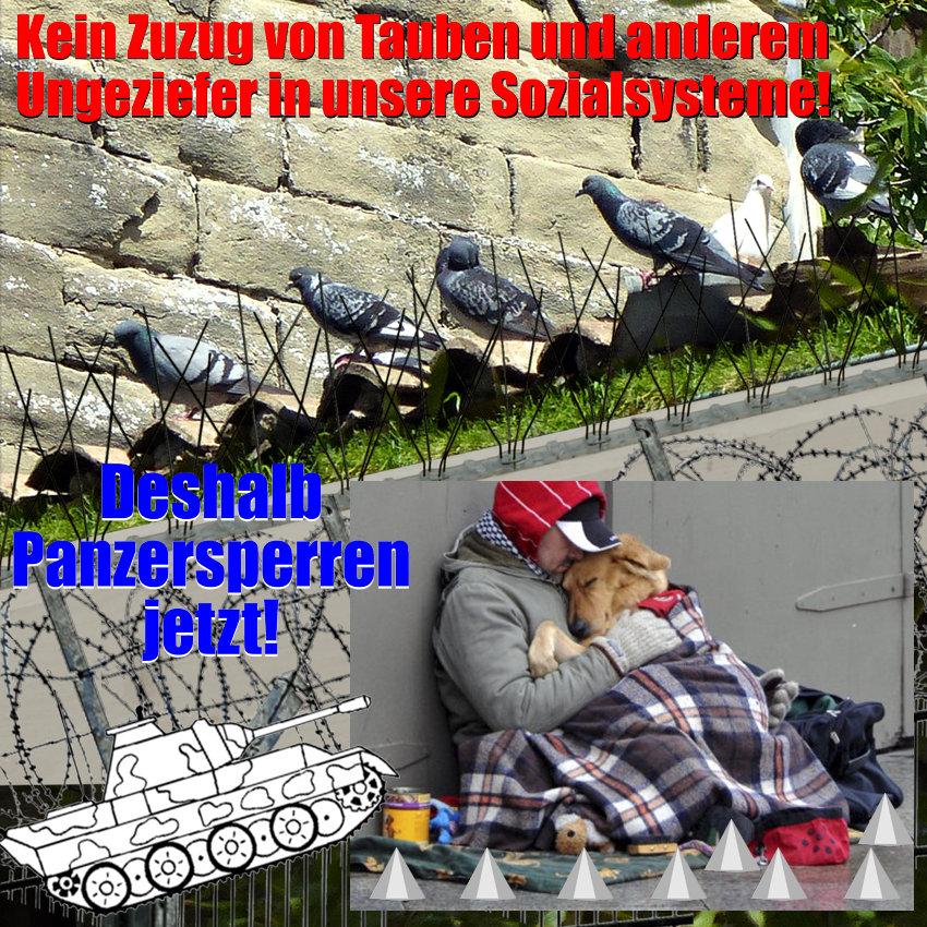 Von Tauben und Menschen