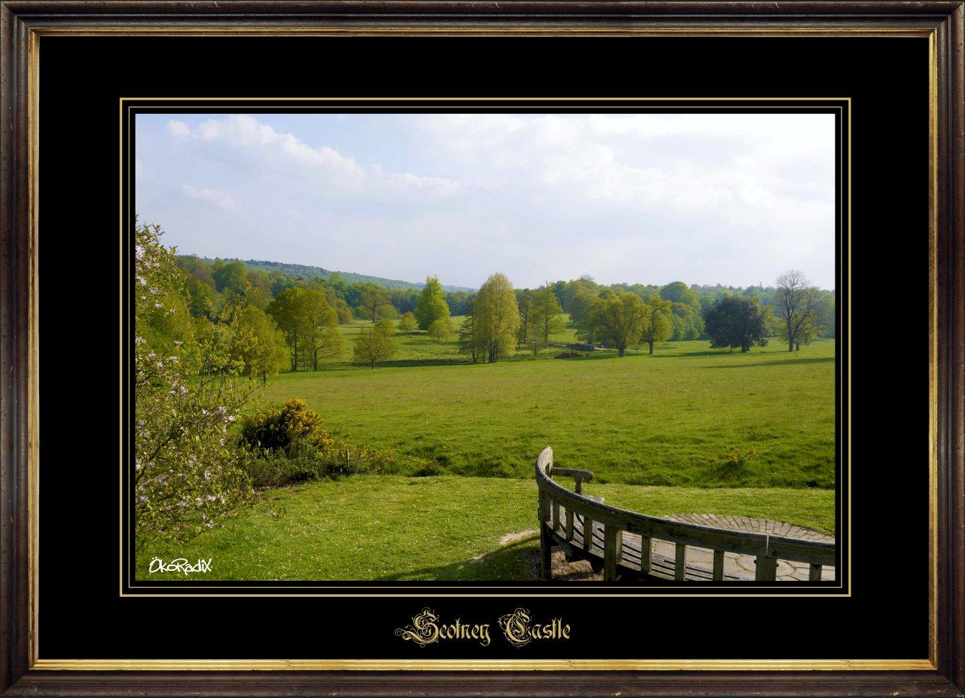 Scotney-park_4